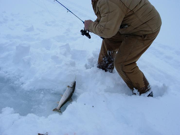 Northwestern ontario ice fishing pasha lake cabinspasha for Ice fishing 2017